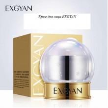 Многофункциональный крем для лица EXGYAN 15 гр.
